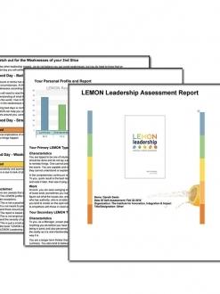 LEMON Leadership Assessment